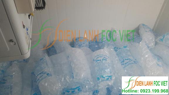 Dịch vụ lắp đặt kho lạnh bảo quản đá viên